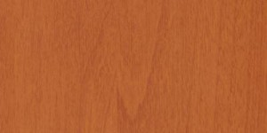 Яблоня толедо Р 21046-03
